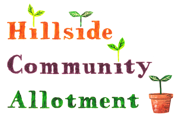 Hillside Community Allotment